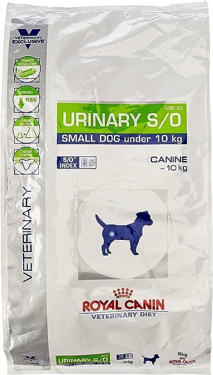 Royal Vet Canine Urinary S/O Small Usd20 8Kg: Amazon.es: Productos ...