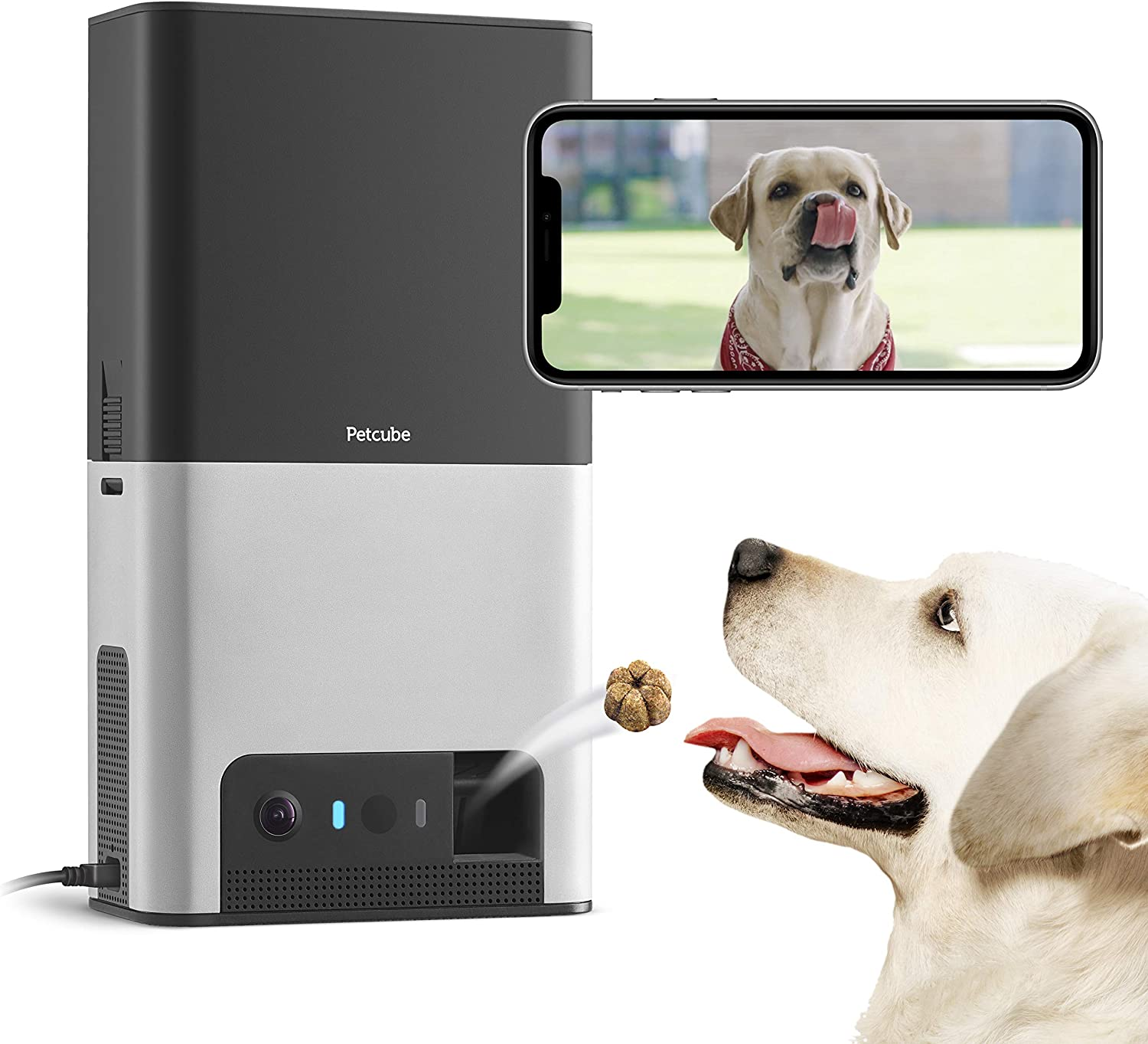 Petcube Bites 2 Wi-Fi Pet Camera with Treat Dispenser
