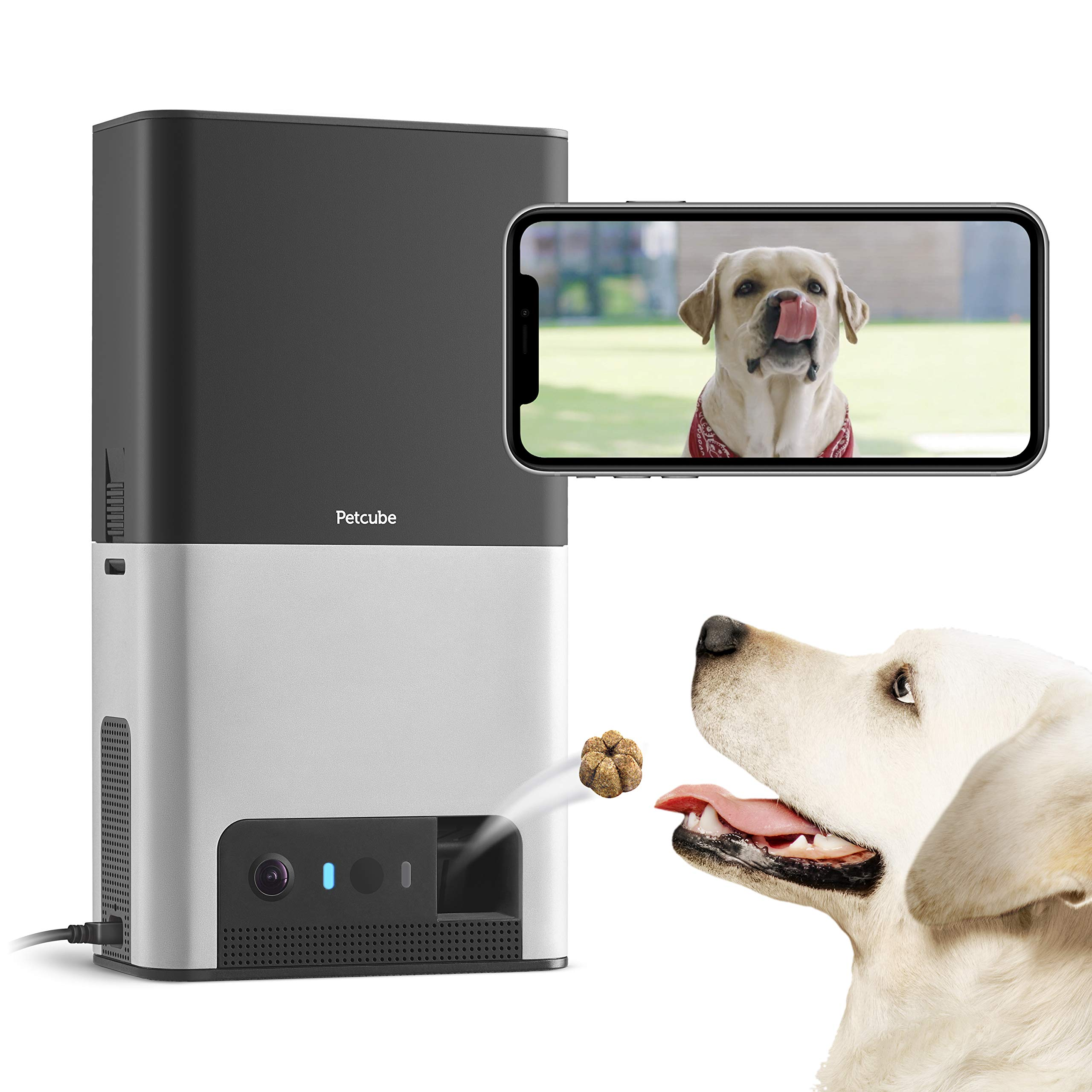 [New 2019] Petcube Bites 2 Wi-Fi Pet Camera with Treat Dispenser & Alexa Built-In, for Dogs & Cats. 1080P HD Video, 160° Full-Room View, 2-Way Audio, Sound/Motion Alerts, Night Vision, Pet Monitor by Petcube