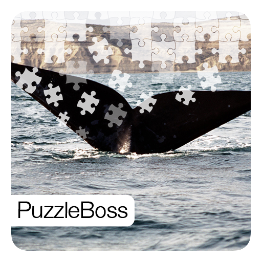 (Whale Jigsaw Puzzles)