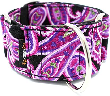 candyPet Collar Martingale para Perros - Modelo Cachemir (S: Ancho ...