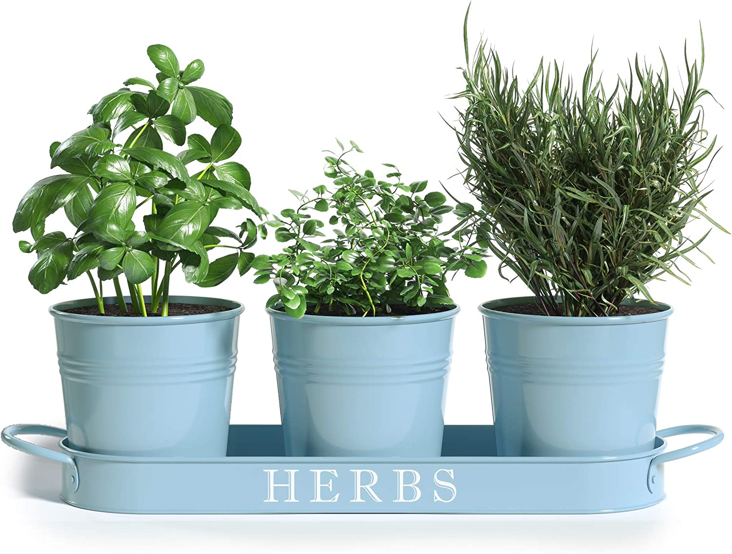 """Barnyard Designs Herb Pot Planter Set with Tray for Indoor Garden or Outdoor Use, Seafoam Blue Metal Succulent Potted Planters for Kitchen Windowsill, (Set of 3, 4.25""""x 4"""" Planters on 12.5""""x 4"""