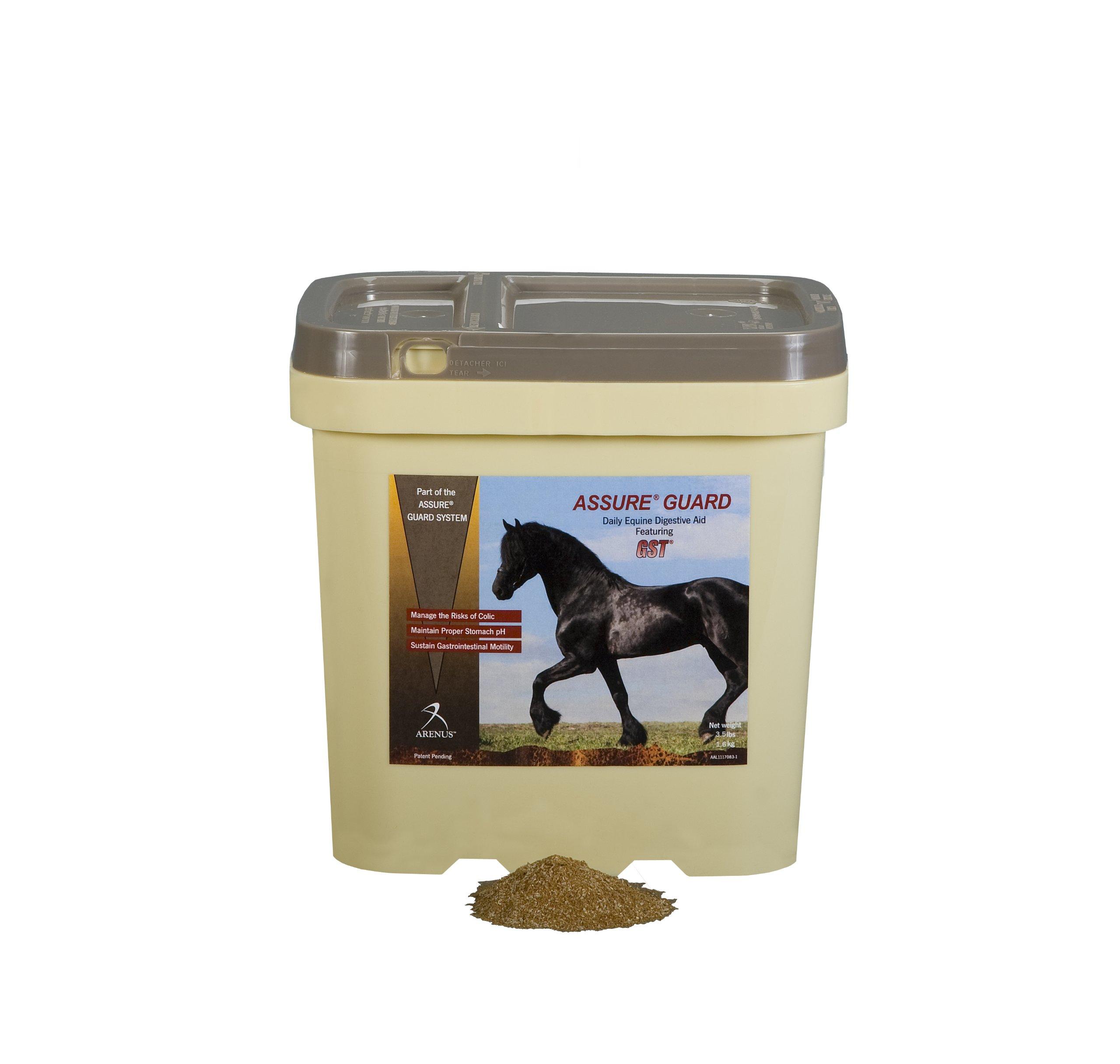 Assure Guard Equine Gastric Health Supplement (3.5-Pound)