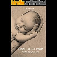 Schatz, es ist soweit! - Geburtsvorbereitung und Verhaltensweisen bei der Entbindung für den Vater: Formalitäten, die während der Schwangerschaft und nach der Geburt erledigt werden müssen (2018)