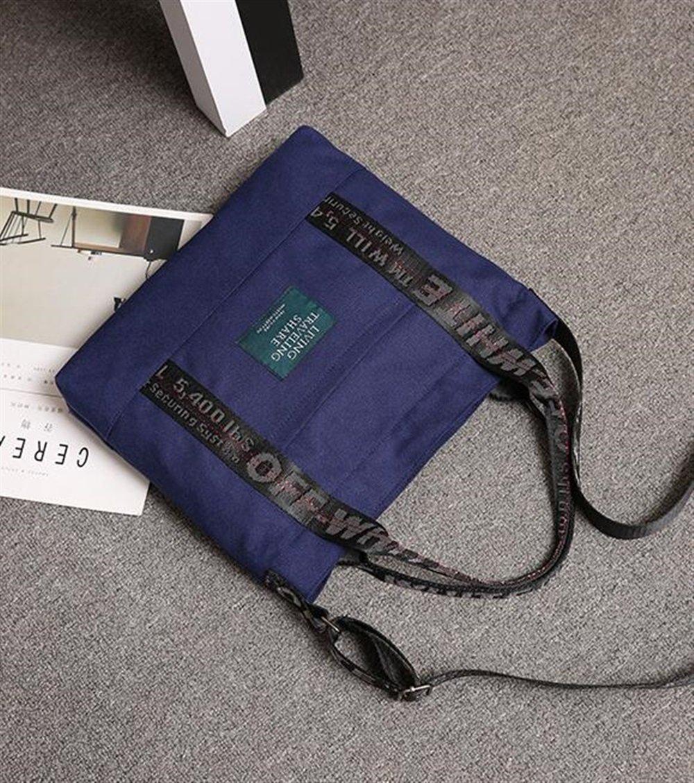 Collezionabili Schaubek Standard Nachträge Kosovo 2011 N 865N11N