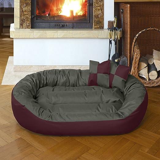 8 opinioni per Beddog 4in1 letto per cane SUNNY XL fino a XXL, 13 colori a scelta, cuscino per