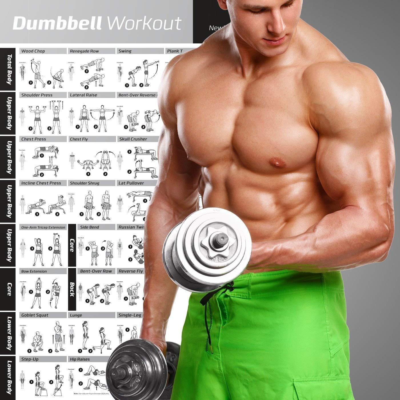 Manubri allenamento poster laminato/ tonifica e stringere/ 500/MM x /Home palestra sollevamento pesi routine/ /Strength training chart/ /Body building guide W//free pesi /massa muscolare