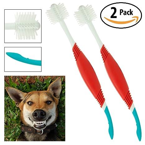 Amazon.com: petrodex perro 2-en-1 cepillo de dientes ...