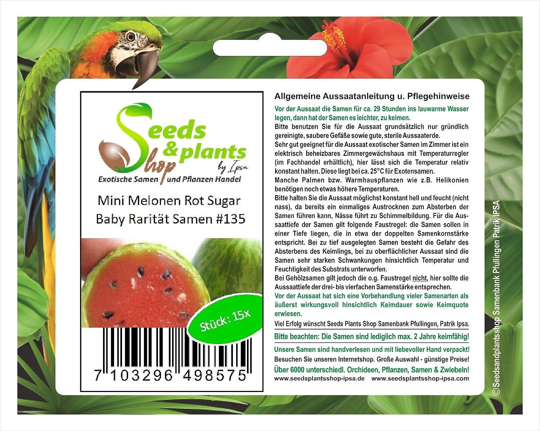 15 fruto semilla mini melón azúcar roja bebé de planta rareza comestible #135: Amazon.es: Jardín
