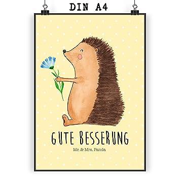 Mr Mrs Panda Poster Din A4 Igel Mit Blume Igel Gute Besserung Genesungswünsche Krankheit Krankenhaus Krank Besuch Poster Wandposter