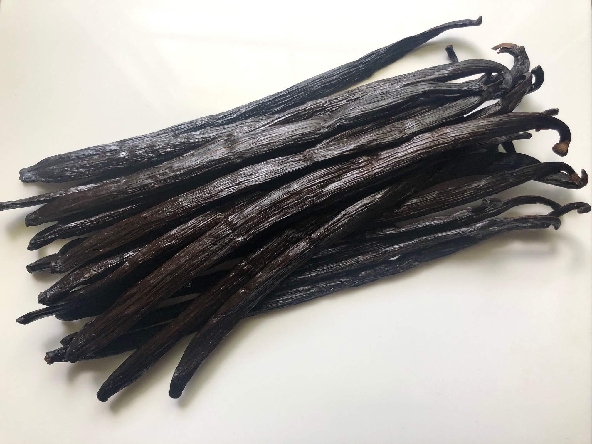 Vanilla Beans (Bourbon Vanilla) by Slofoodgroup Vanilla Planifolia (.5 lb Vanilla Beans)
