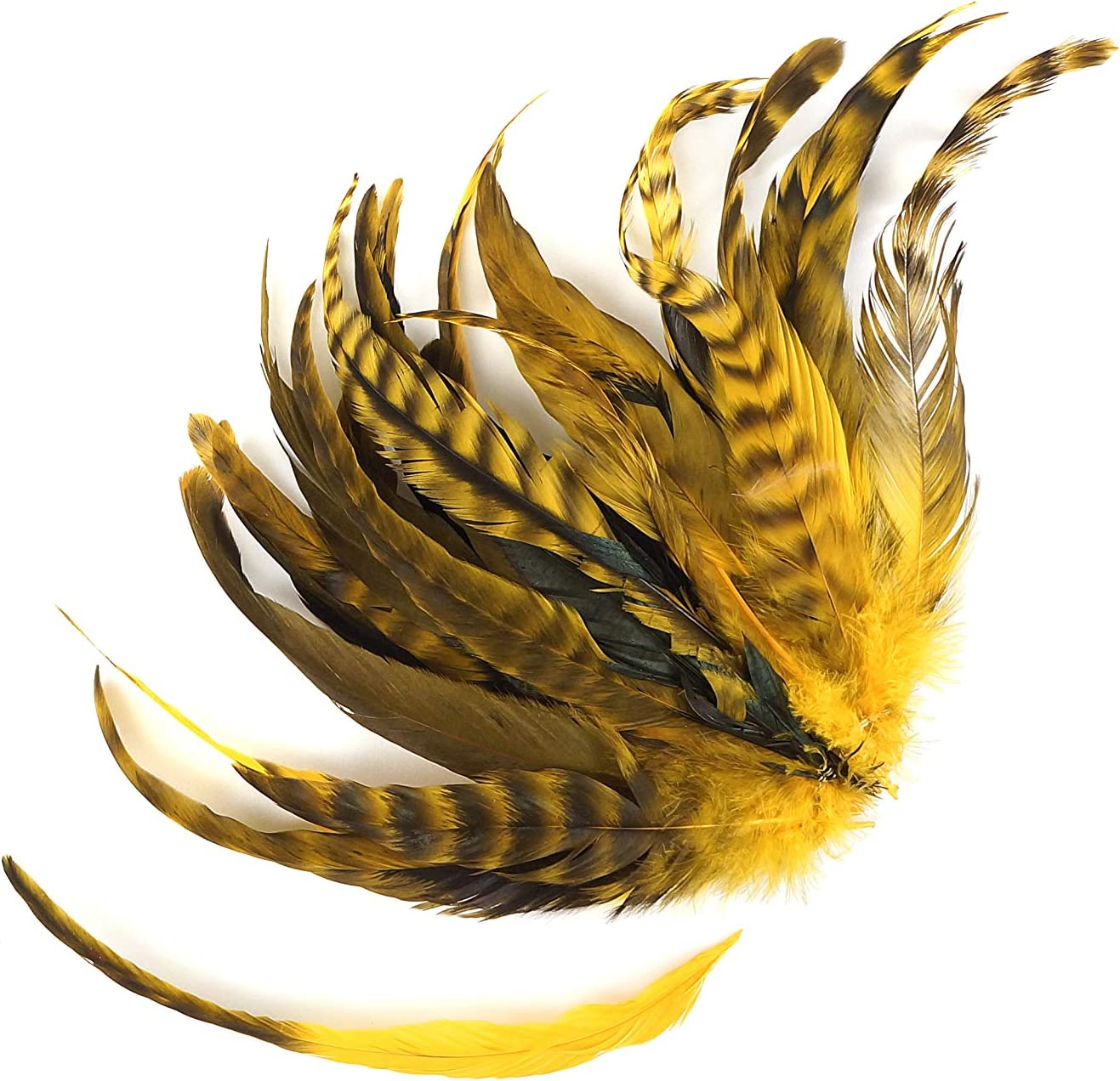 8-10 inch Colorful Rustic Craft Supply for DIY Home Decor ZUCKER 25pc Rooster Chinchilla Tail Feathers Yellow Gold