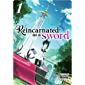 Reincarnated as a Sword (Light Novel) Vol. 1 (English Edition)