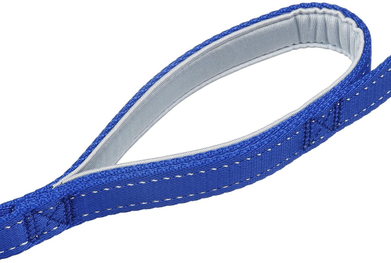 AmazonBasics Padded Handle Nylon Dog Leash,4ft,Black AMZLS-006a-black