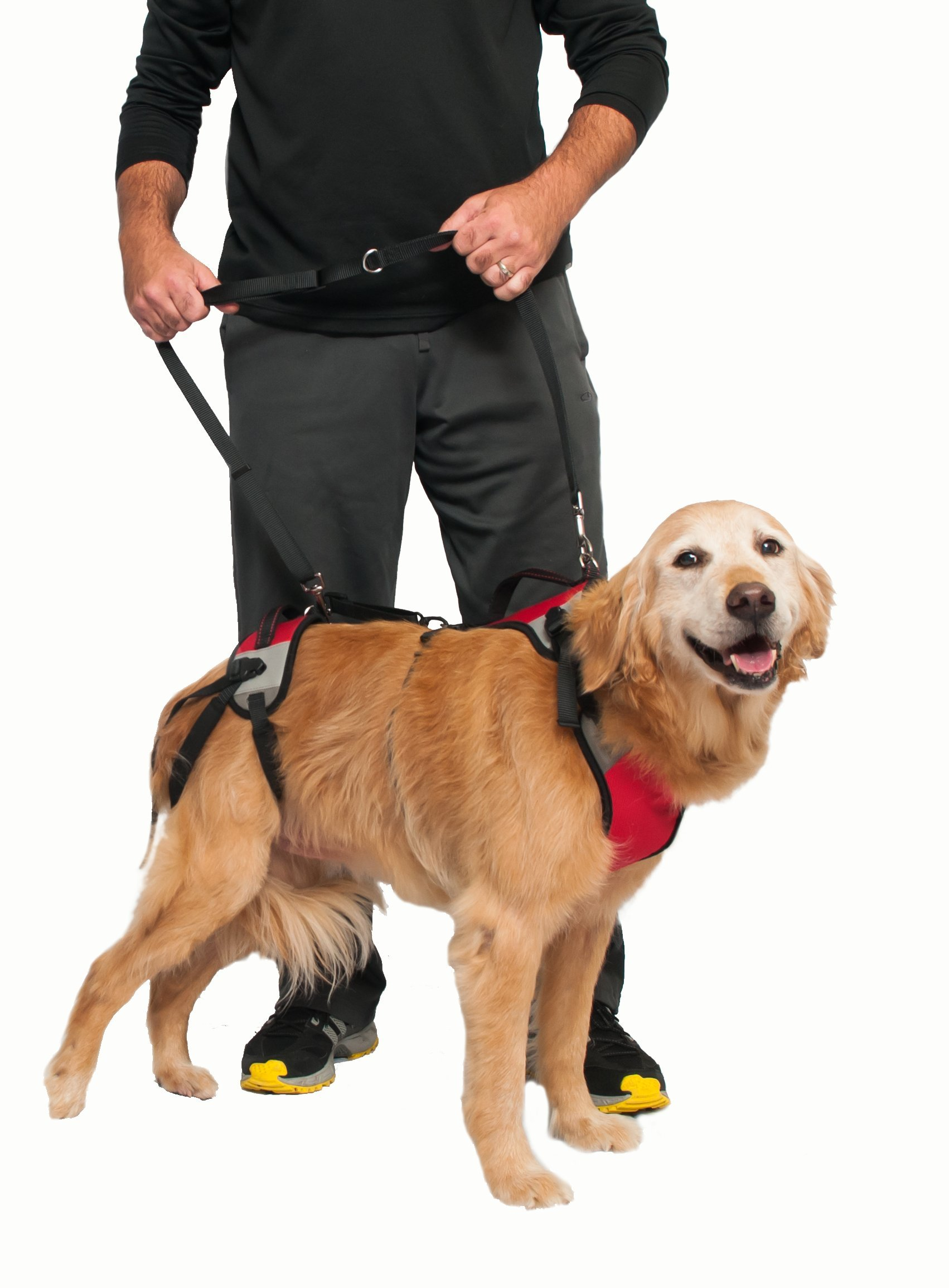 TopDog Health– The Ultimate Support Harness for Dogs (T.U.S.H) – Small - Helps Supports Older Dogs Struggling to Get Around or Dogs Recovering from Surgery – Created by a Veterinarian