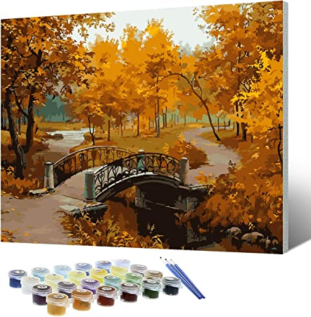 DIY Pre-Printed Canvas Oil Painting Gift for Adults Kids Paint by Number Kits With Wooden Frame for Home Decor Ballet 16*20 inch