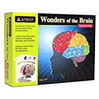 Wonders of The Brain Science Kit, Explore The Human Brain, Ages 10+