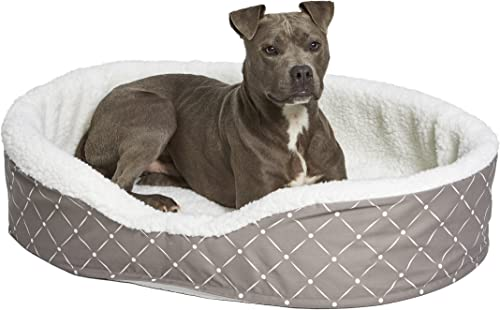 MidWest Homes for Pets Couture Orthopedic Cradle Pet Bed for Dogs Cats