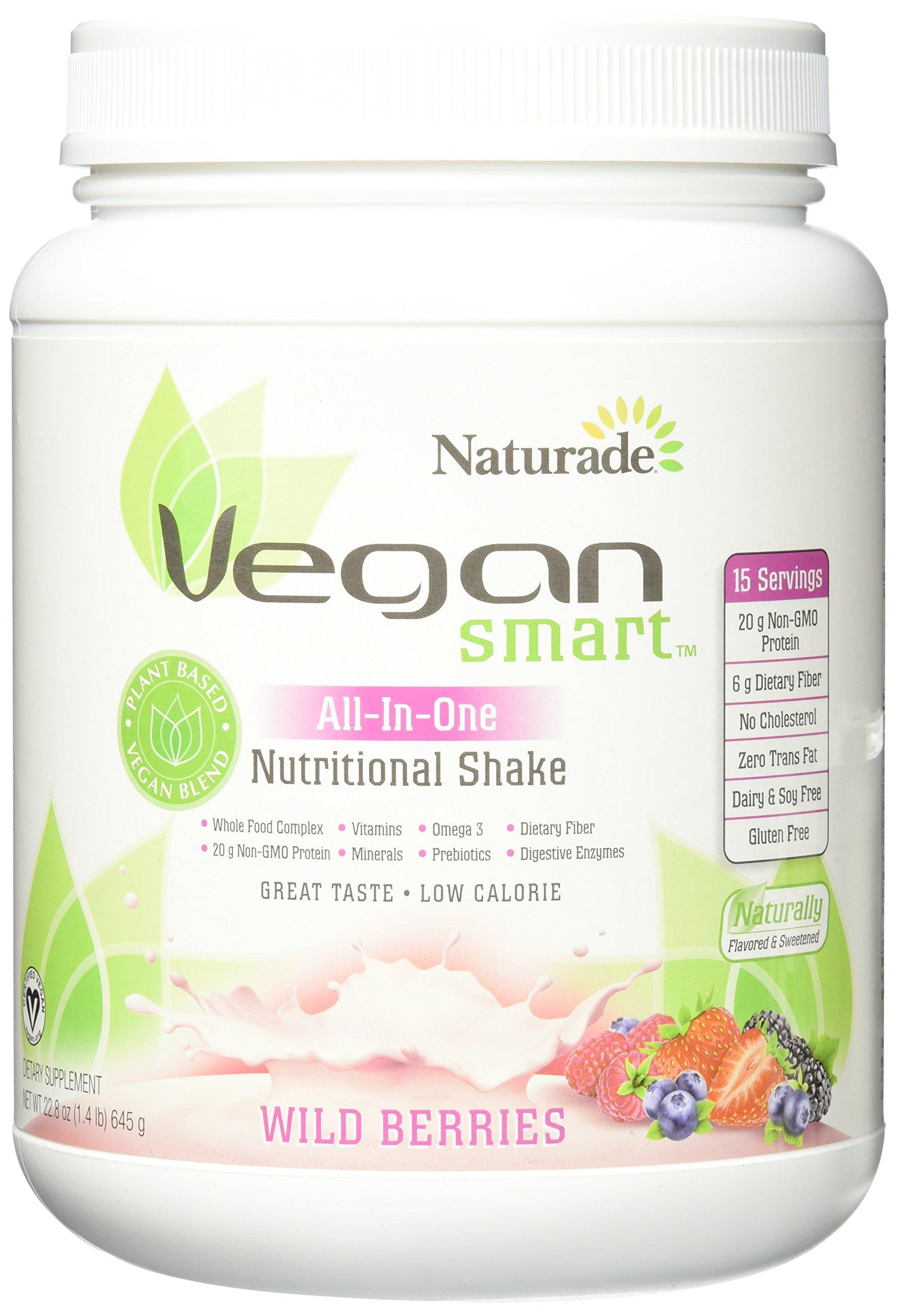 Amazon.com: Naturade Vegansmart All-in-one Nutritional Shake, Vanilla, 22.8 Ounce: Health
