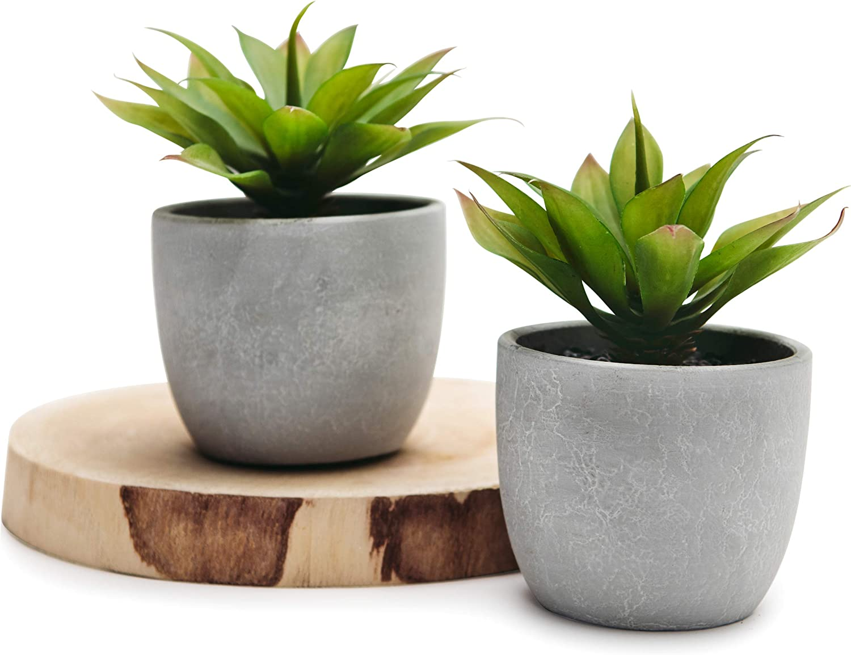 Kurrajong Farmhouse Two Agave Fake Plants In Pots Set Of 2 Faux Succulents 5 X 4 Artificial Plant In Pot Beautiful Feaux Plant For Home Decor Or Feaux Succulents For