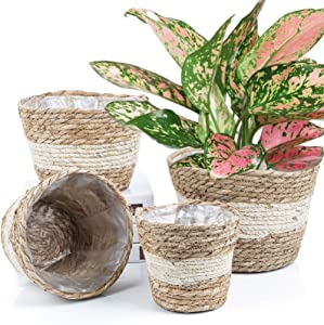 6+7+8+10 Inch Brown Multi Handmade Straw Braid Flower Basket with Plastic Protector Inside- Food Container for Outside Picnic Fun- Cloth Container Or Sundry Holder, Set of 4