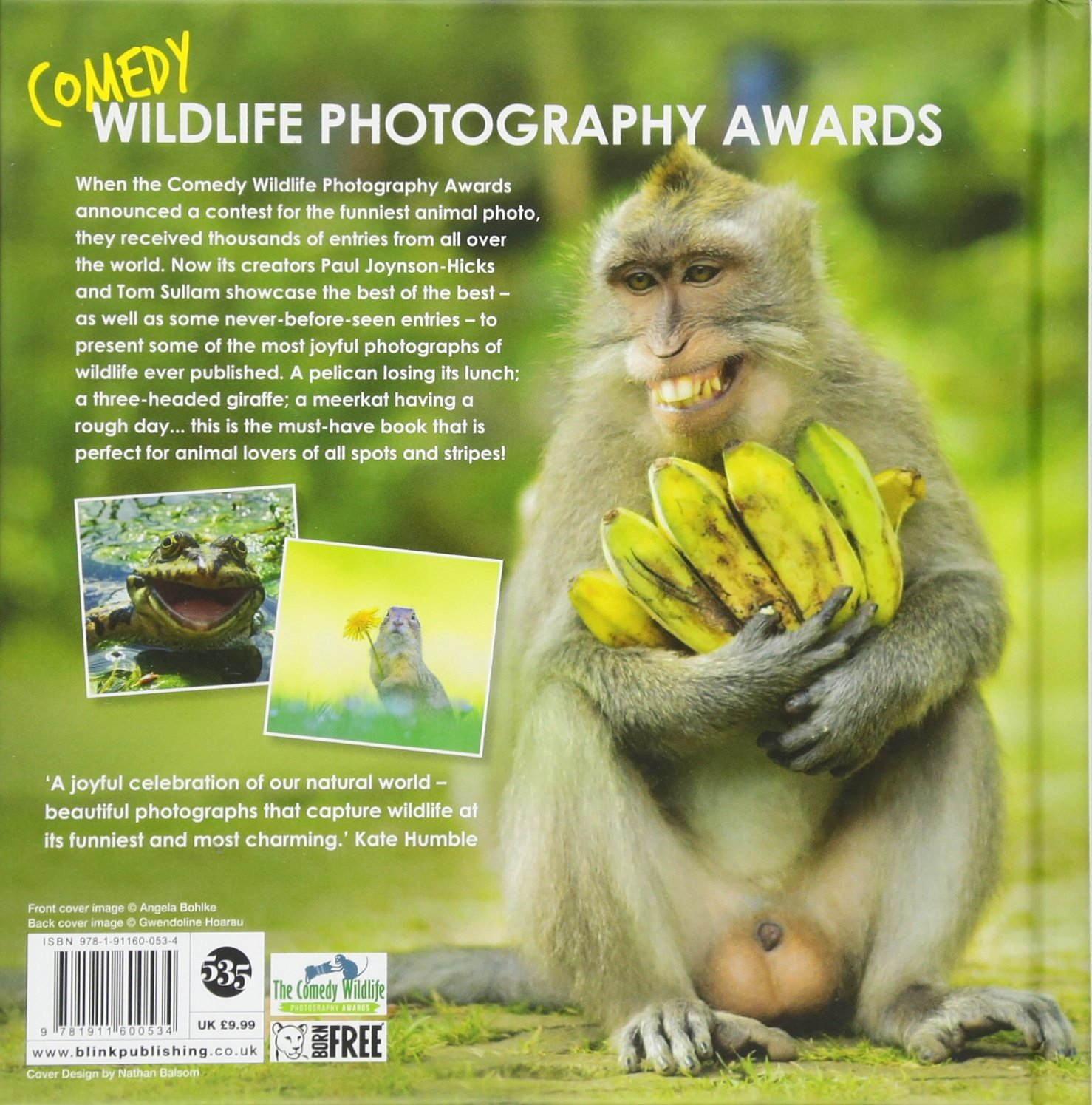 Image of: Wild Animals Comedy Wildlife Photography Awards Amazoncouk Paul Joynsonhicks Tom Sullam Tom Sullam Books Amazon Uk Comedy Wildlife Photography Awards Amazoncouk Paul Joynsonhicks