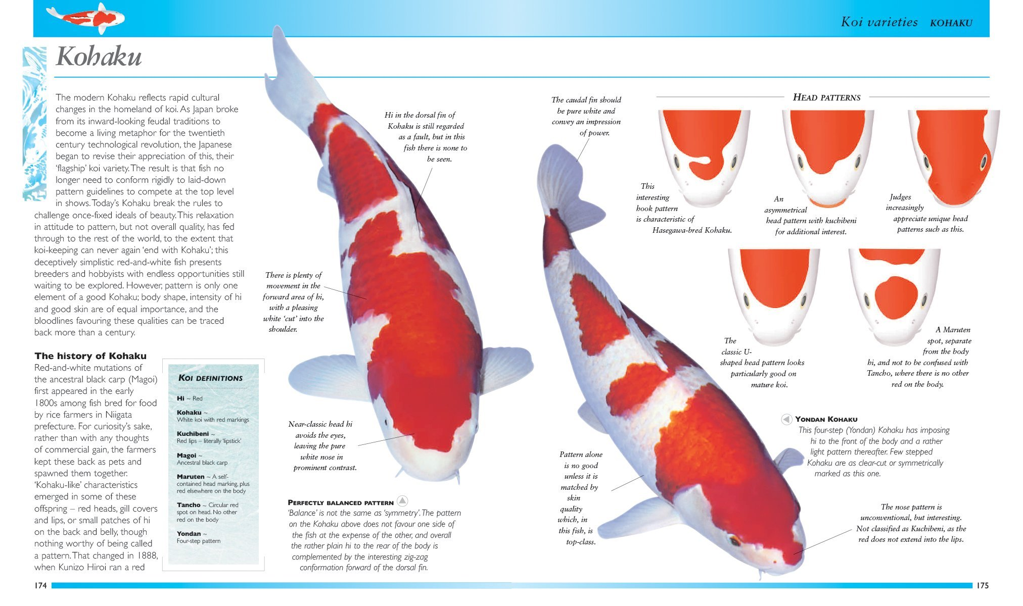Koi: A Complete Guide to their Care and Color Varieties: Bernice ...