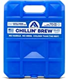 ARCTIC ICE Chillin Brew Series Reusable Cooler Pack, Reusable Ice Packs for Coolers, Long Lasting Ice Pack, Large Ice Pack