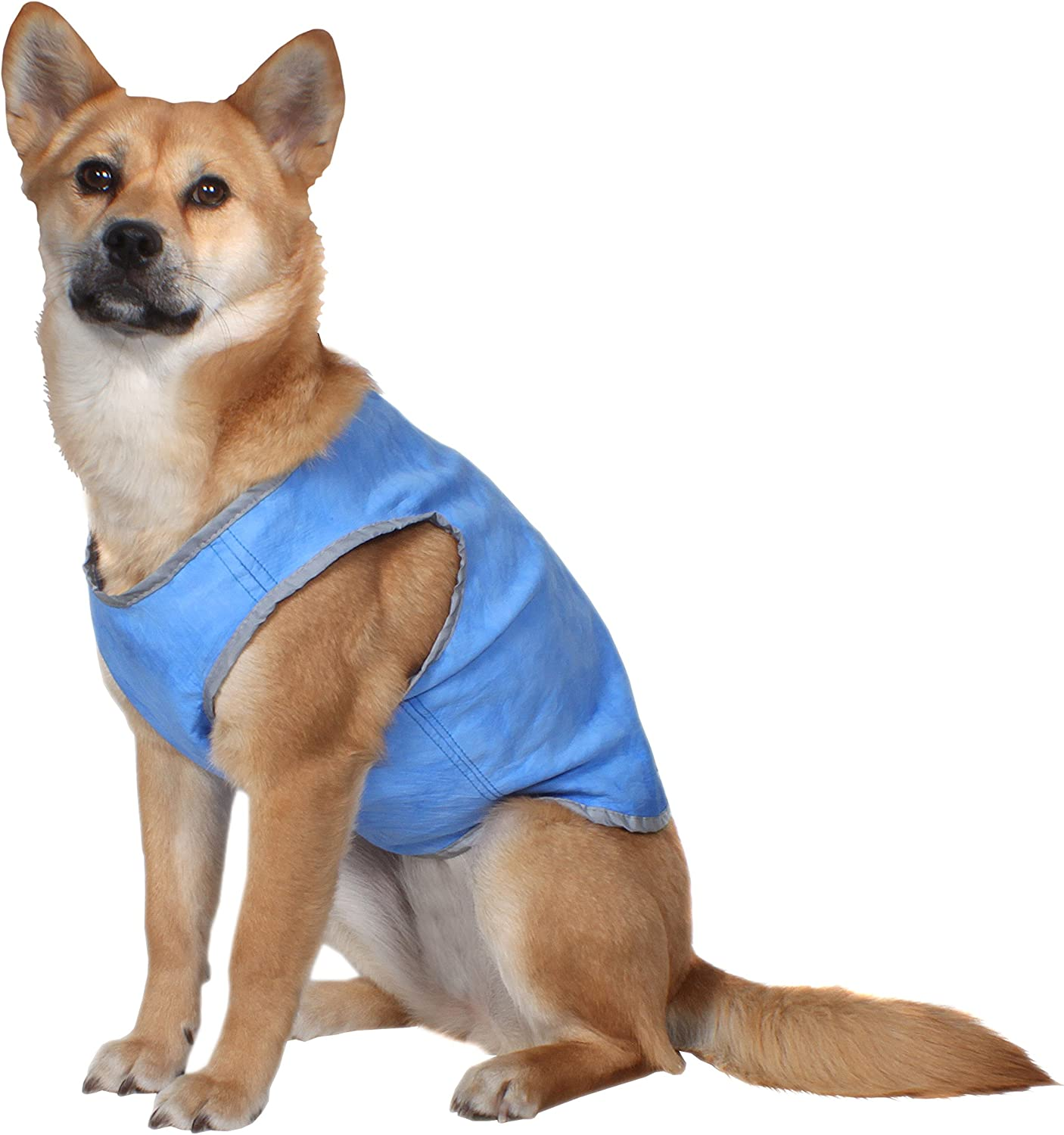 American Kennel Club AKC Cooling Vest for Dogs, Medium, Blue