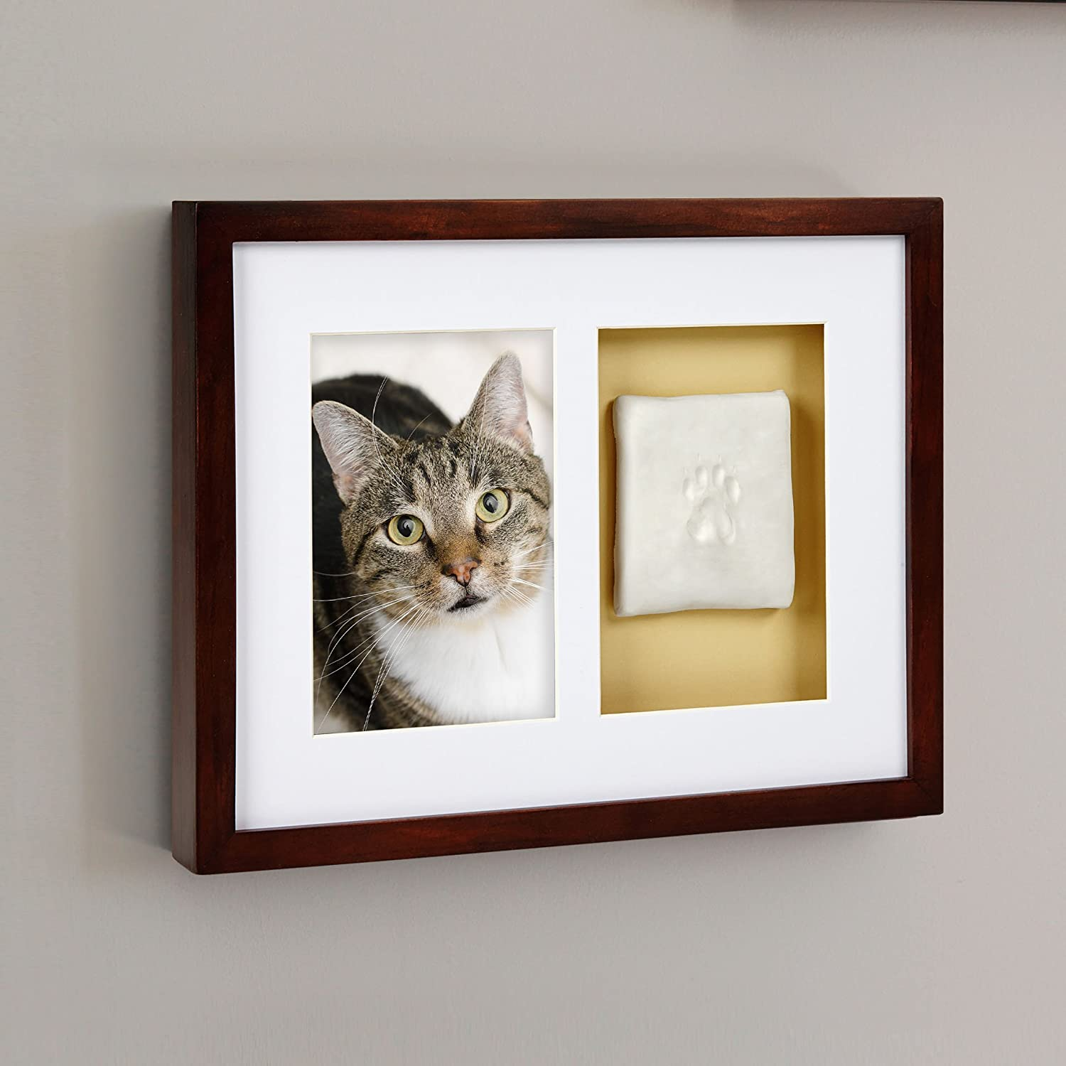 Amazoncom Pearhead Dog Or Cat Paw Prints Pet Wall Frame With Clay