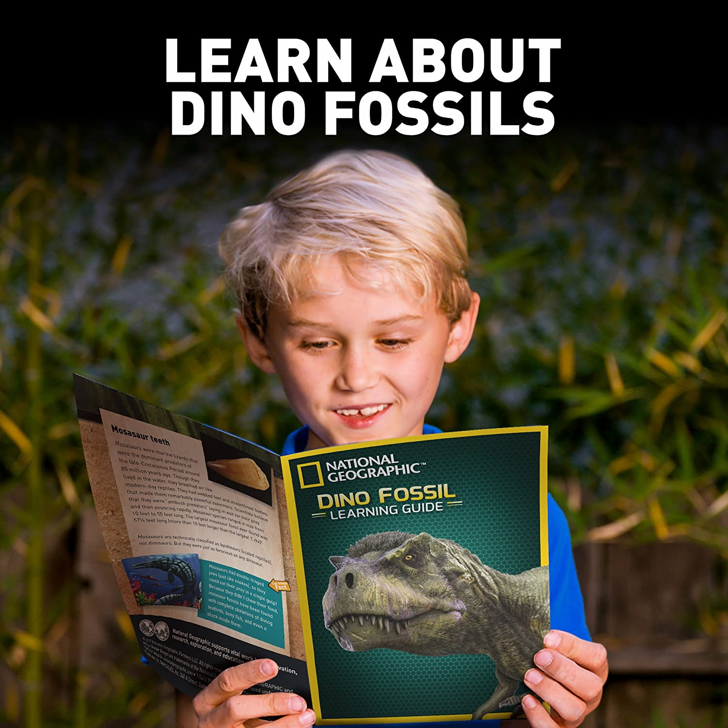 Great Jurassic Science gift for Paleontology and Archeology enthusiasts of any age Excavate 3 real fossils including Dinosaur Bones /& Mosasaur Teeth NATIONAL GEOGRAPHIC Dino Fossil Dig Kit