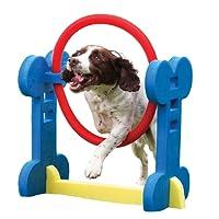 Rosewood Small Dog Agility Hoop