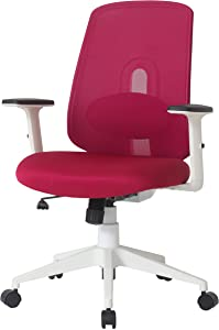 NOUHAUS Palette Ergonomic Office Chair Comfortable Swivel Computer Desk Chair, Lumbar Adjust Rolling Chair. (Burgundy)