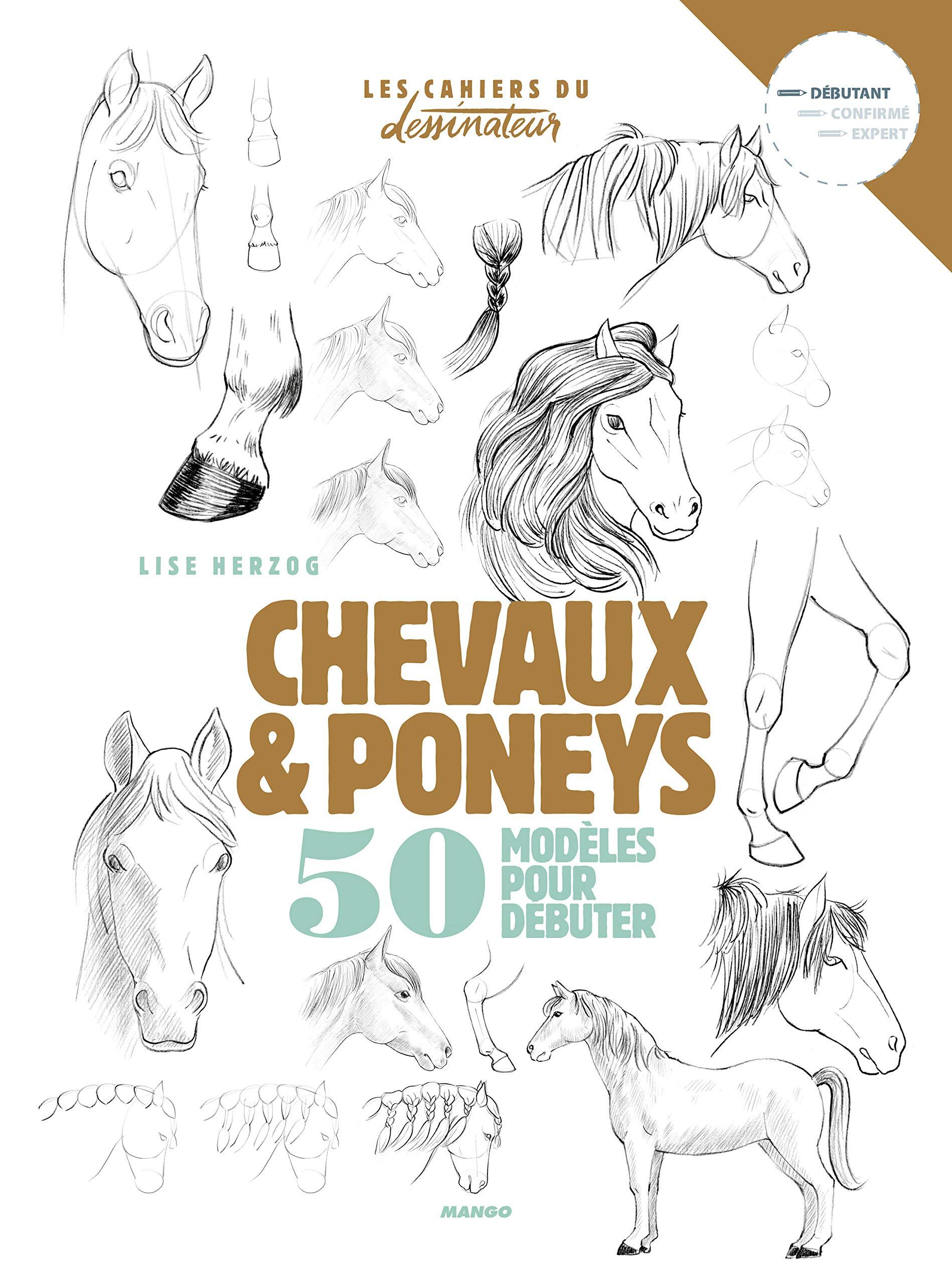 Amazon Fr Dessiner Chevaux Et Poneys 50 Modeles Pour Debuter Herzog Lise Livres