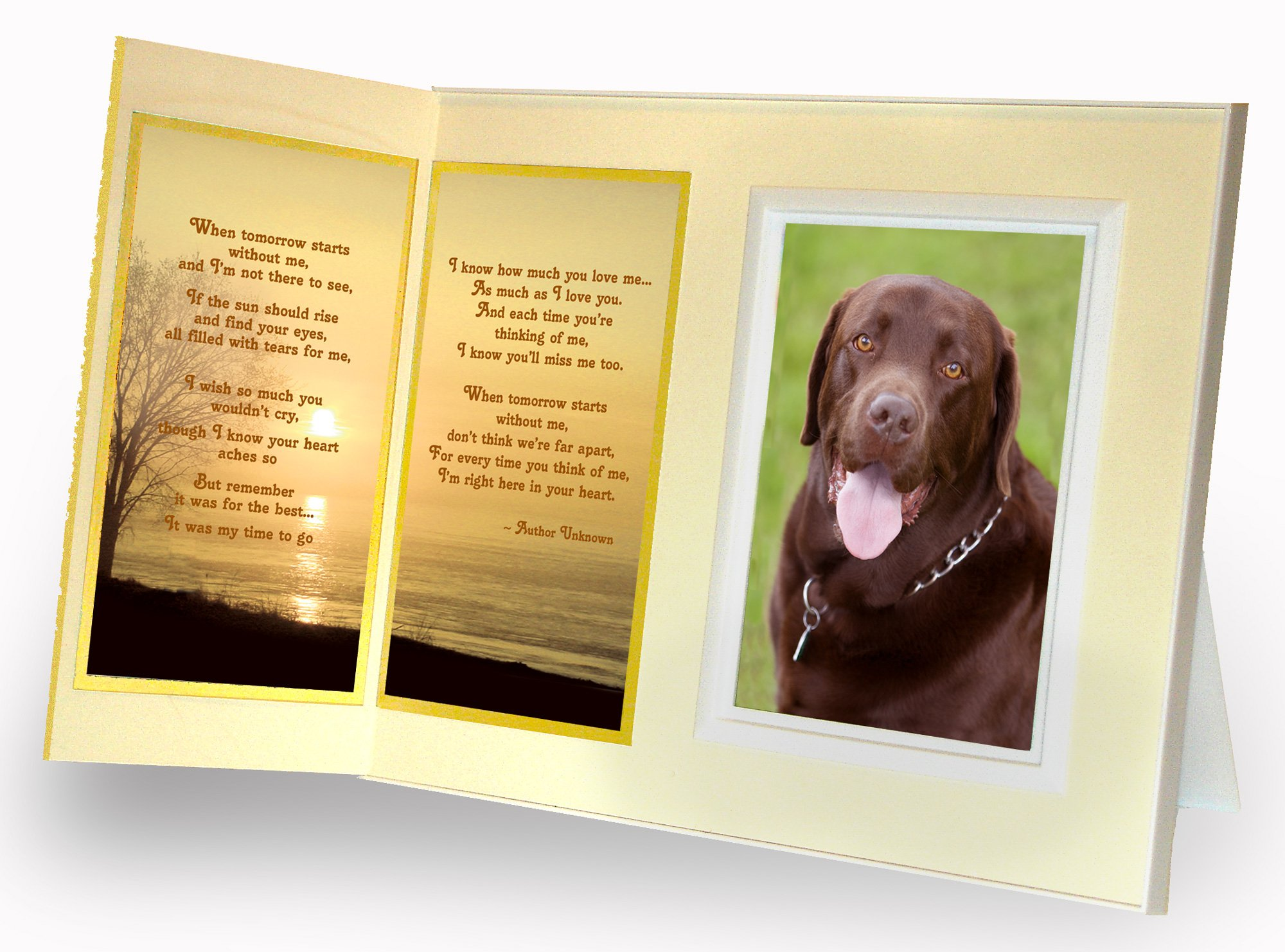 Pet Lover Remembrance Gift,''When Tomorrow Starts Without Me'' Poem, Memorial Pet Loss Picture Frame Keepsake and Sympathy Gift Package, Warm White with Foil Accent