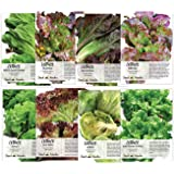 Lettuce Lovers Collection (8 Individual Packets of Lettuce Seeds) Non-GMO Seeds by Seed Needs