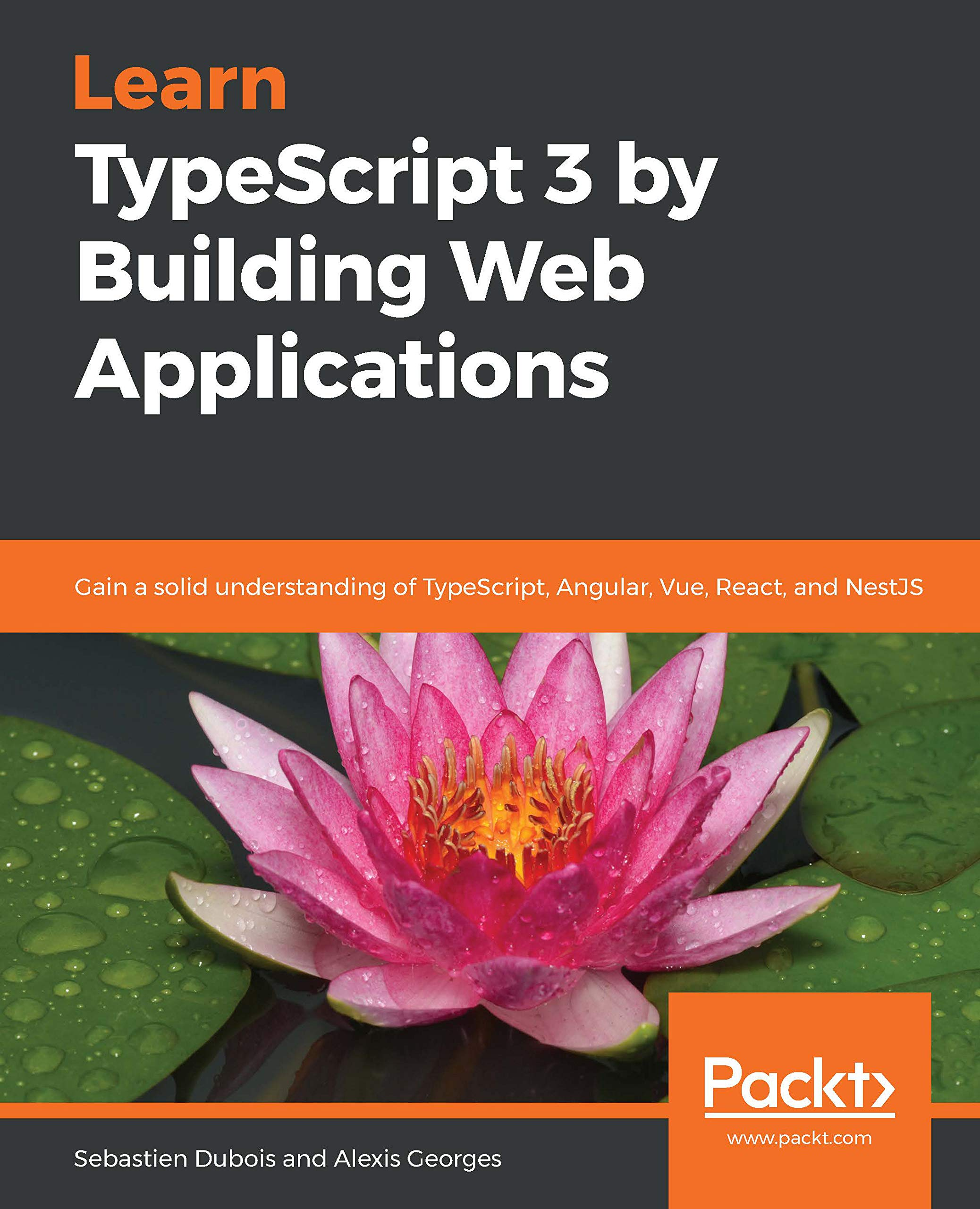 Learn TypeScript 3 By Building Web Applications  Gain A Solid Understanding Of TypeScript Angular Vue React And NestJS  English Edition