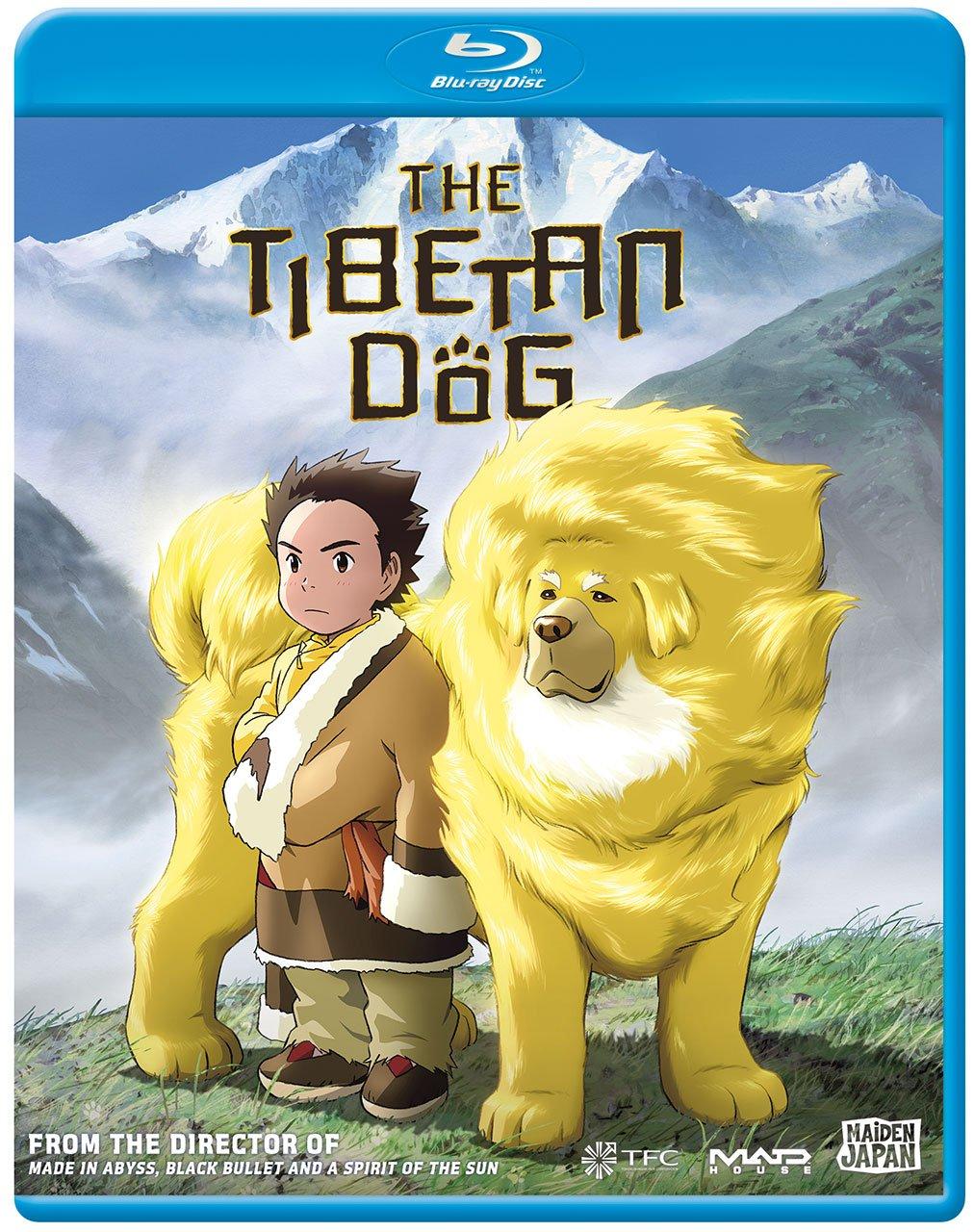 Blu-ray : Tibetan Dog (Anamorphic, Subtitled)