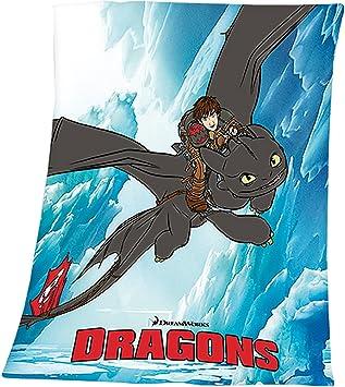 Drachenzahmen Leicht Gemacht Fleecedecke 125x150cm Dragons Amazon
