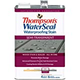 Thompson's Water Seal TH.042861-16 Semi-Transparent Waterproofing Stain, Coastal Gray