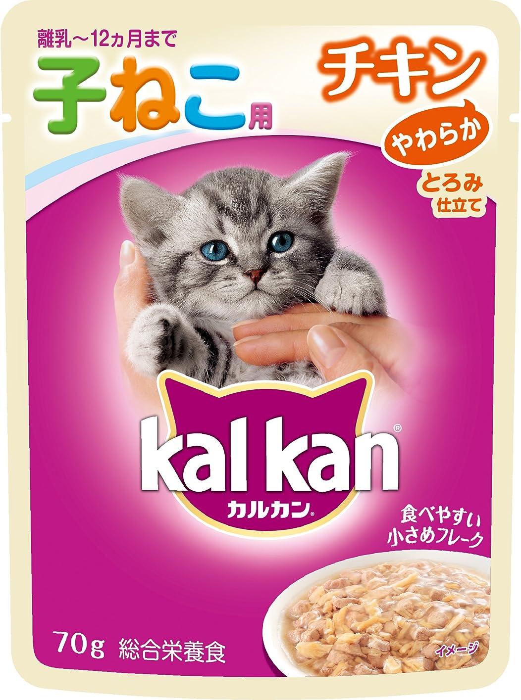 小麦粉ジョージエリオットアーサーロイヤルカナン FHN-WET ベビーキャット 猫用 100g×12個
