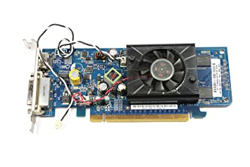 Amazon.com: HP PCIe de perfil bajo Tarjeta Gráfica GeForce ...