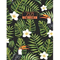 2020 Daily Diary: A4 Day on a Page to View Full DO1P Planner Lined Writing Journal - Tropical Birds Toucans Cover Black…