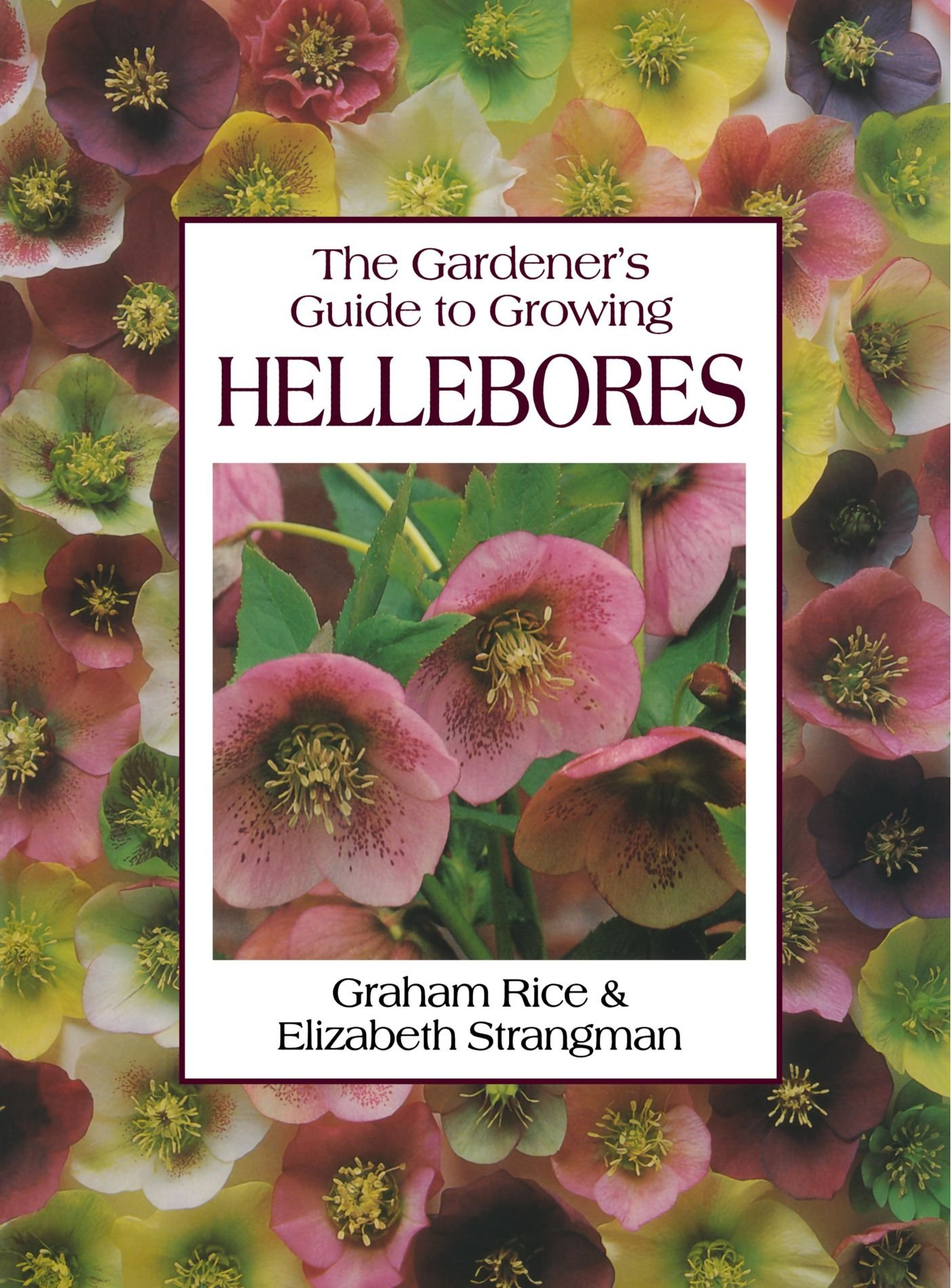 The Gardener S Guide To Growing Hellebores Graham Rice