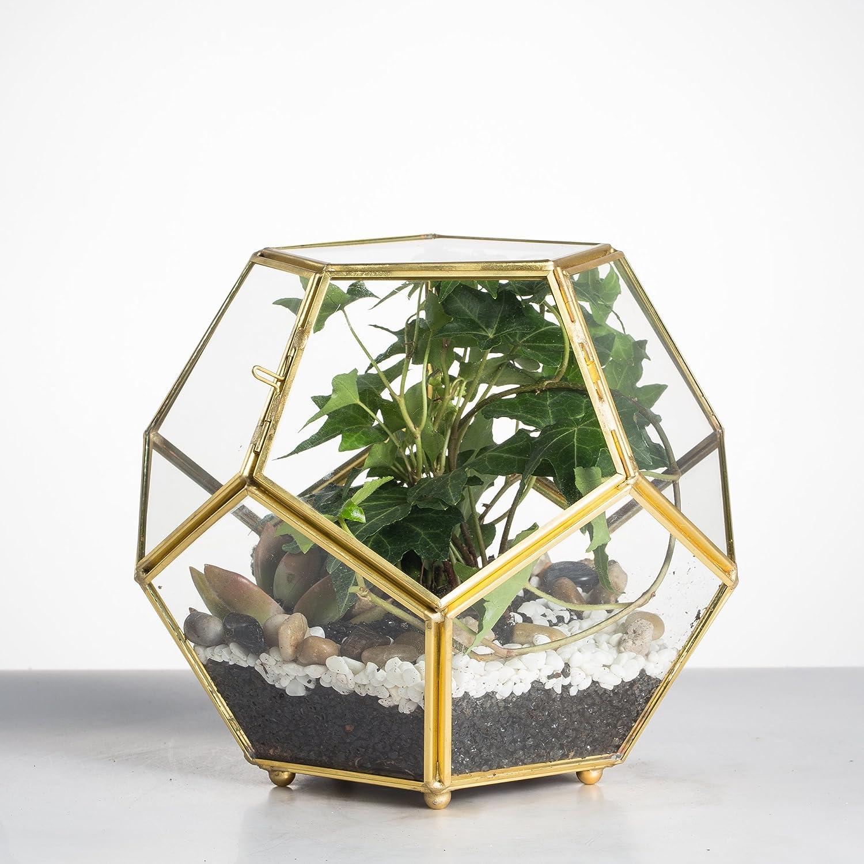Thank You Gifts-Brass Glass terrarium
