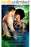 The Wolf's Concubine: BWWM Paranormal (Shifter Enforcers Book 2)