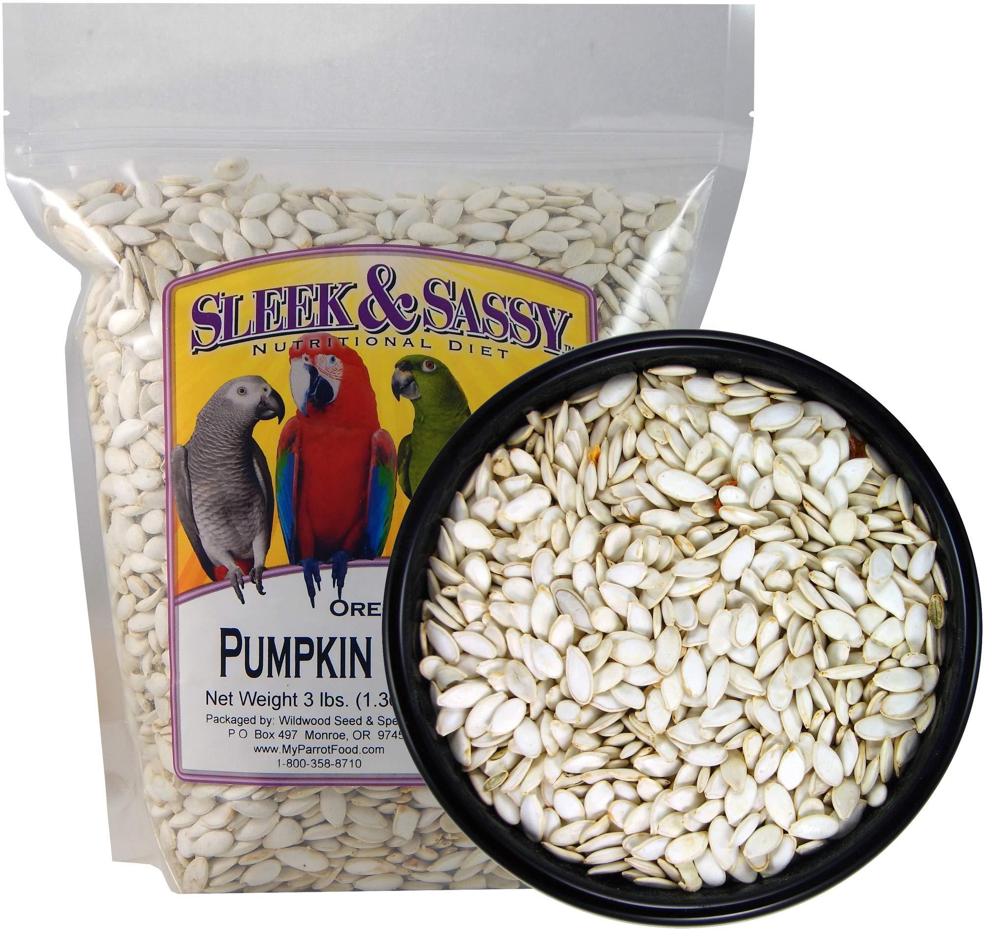 SLEEK & SASSY NUTRITIONAL DIET Oregon Squash (Pumpkin) Seeds Bird Treat (3 lbs.) by SLEEK & SASSY NUTRITIONAL DIET