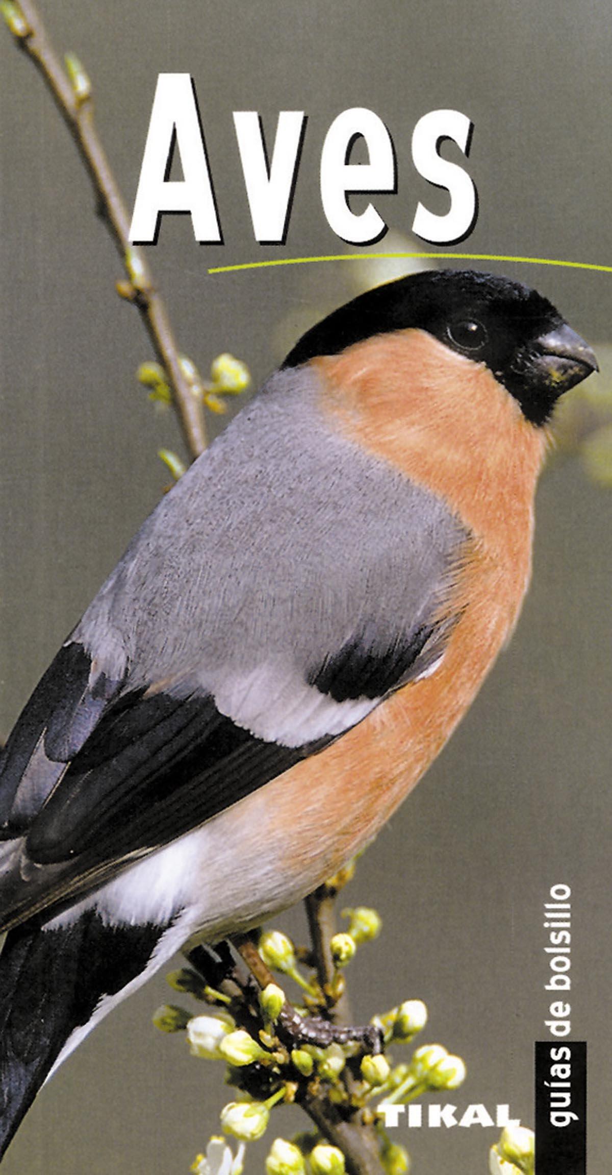Aves(Guias De Bolsillo) (Guías De Bolsillo): Amazon.es: Dupérat, Maurice: Libros