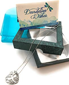 Smiling Wisdom - Dragonfly Cutout Pendant -Dandelion Wishes Girls Gift Set - Stainless Steel Heart Necklace - Wishes of Joy - Birthday, Goodbye, Anytime Gifts - Girls, Teens, Women- Silver Color