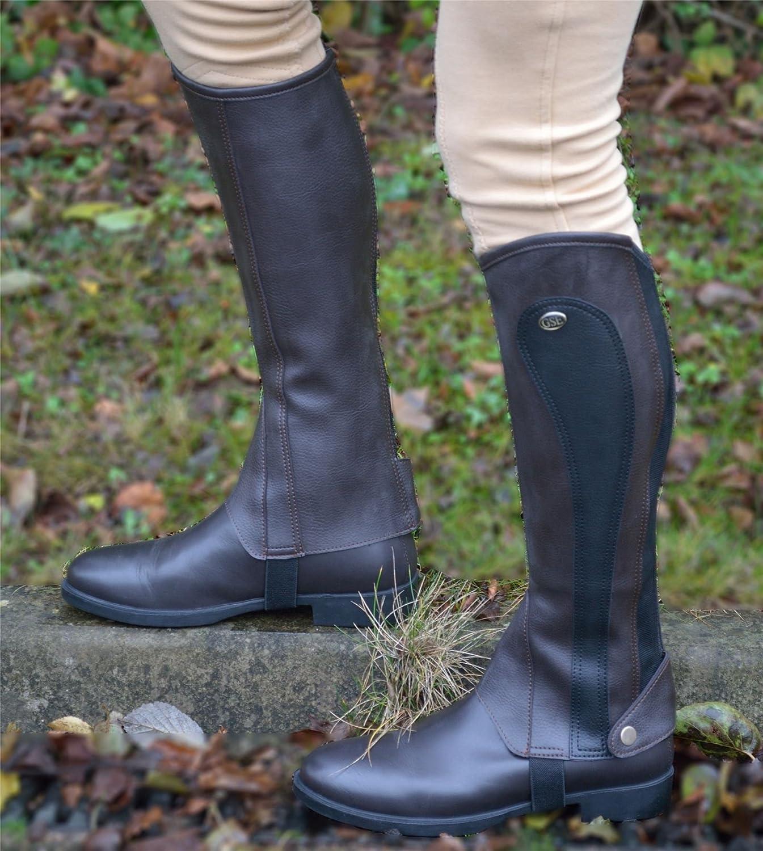 GS Equestrian SG Botas de la Mujer sintético Barton Impresión Chaps/Polainas, Mujer, Color Negro, Tamaño Large
